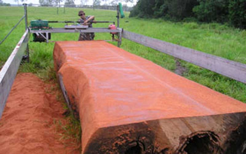 Cutting Slabs of Australian Hardwood